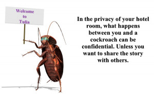 COCKROACHES QUOTES