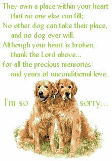 am so sorry to hear that your babies passed away. Losing a pet ...
