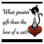 Cute, Funny and sweet cat quotes for cat lovers of all ages.