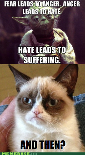 Grumpy Cat Internet Meme Invades Star Wars