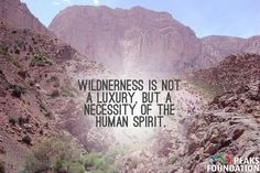 ... of the human spirit. #nature #quotes #inspirational #outdoors More
