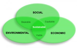 sustainable development with a focus on our environment