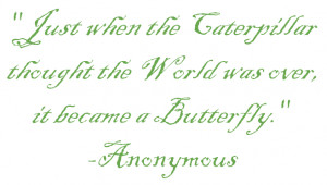 Butterfly Quotes and Sayings