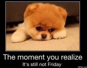 Friday_1.jpg