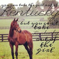 ... girl out of Kentucky, but you can't take the Kentucky out of the girl