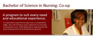 BSN Nurse