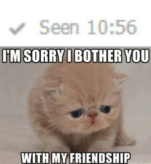 Sorry I Bother You Cat Meme