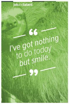 ... jobandtaletn #positive #quotes #sloth #smile www.jobandtalent.com More
