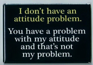 Attitude Problem FRIDGE MAGNET funny quote bad personality behavior ...