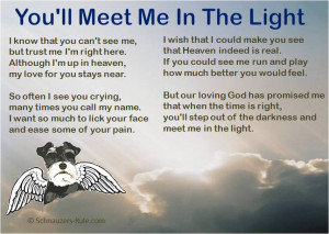 Pet Loss Poem You'll Meet Me In The Light