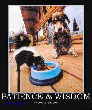 Patience & Wisdom