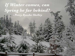 please enjoy these best winter quotes and sayings
