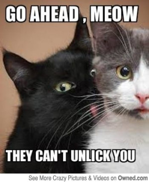for_only_one_dollar_a_day_you_can_prevent_unwanted_cat_licks_540.jpg