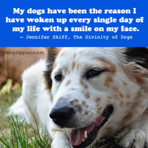 Sad Dog Quotes