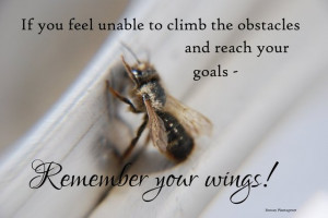 Inspirational wallpaper on Obstacles: If you feel unable to climb
