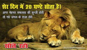 Sleep for Success Funny Hindi Quotes