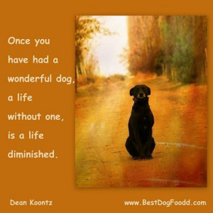 Quotes About Dogs Passing Away