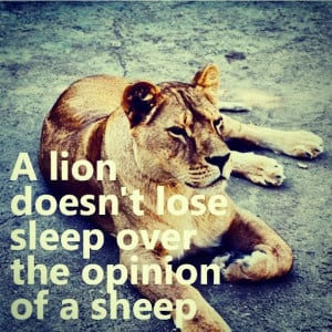 lion #strong #wise