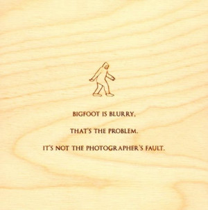 funny-quotes-on-wood-bigfoot