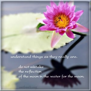 ... Do not mistake the reflection of the moon in the water for the moon