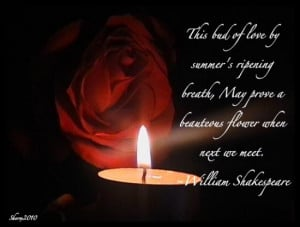 ... --słowa--quotes--RUZE--red-rose-and-quote--Love--sayings_large.jpg