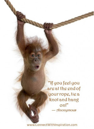 Difficult Times, Hang on quote, Monkey hanging from a rope picture