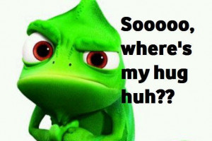 where_is_my_hug#funny_pic