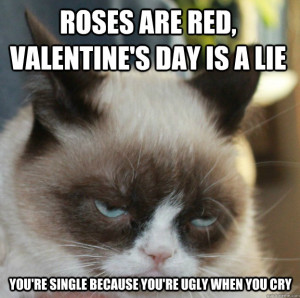 What'd you think? Send us your favorite Grumpy Cat Valentine's Day ...
