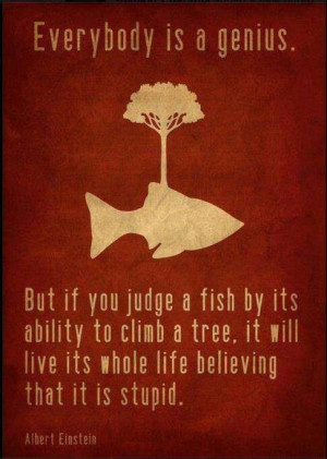 Don't Judge a Fish