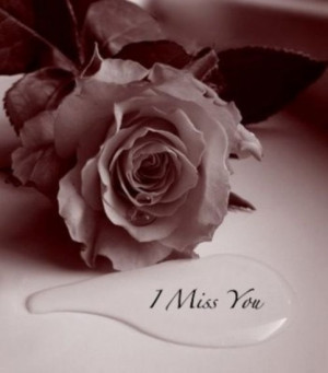 claudia-words--quotes--sayings--mensagens--i-miss-you--Liebe--flower ...