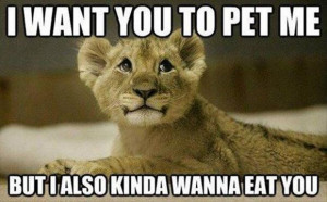 30 Funny animal captions - part 14 (30 pics), funny captioned pictures ...