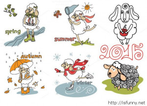 2015 year of sheep funny wallpaper funny picture