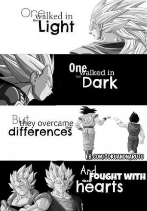 Goku and Vegeta - Dragon Ball Z Photo (38073029) - Fanpop