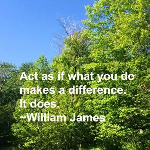 as if what you do makes a difference. It does.