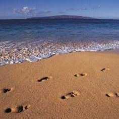 Beach Life Quote Quotes Ocean