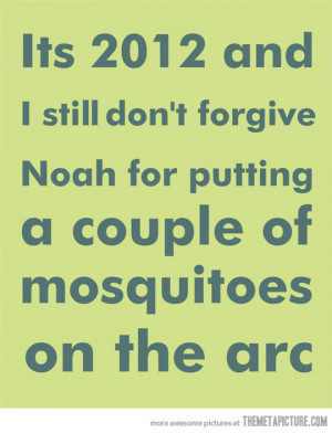 Funny photos funny Noah ark quote bible