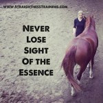 Cute Horse Quotes Horse Quotes Horse Quotes And Sayings Horse Jumping
