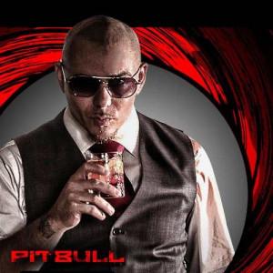 ... pitbull ft chris brown 2 pitbull bon bon 3 pitbull hotel room service
