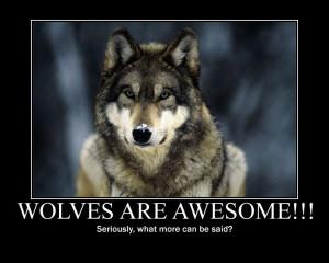 Wolf motivation spirit mythical black wild HD Wallpaper
