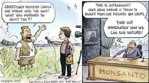 into the wild, keywords: GMO genetically modified genetic engineering ...