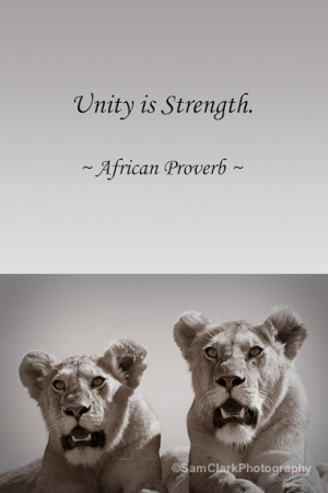 Animal Quotes Inspirational Wall art, animal quote