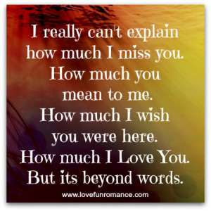 can't explain how much I miss you. How much you mean to me. How much ...