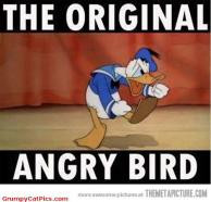 This Is The Original Angry Bird Don't Forget Funny Cute Picture >