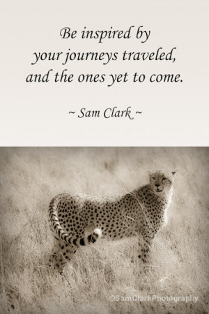 Photos with WORDS - Wildlife Photography, Inspirational Quote, Animal ...