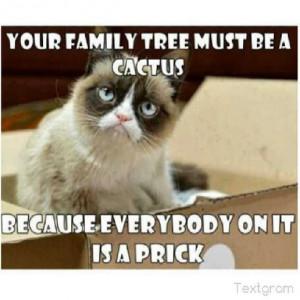 Grumpy cat funny, grumpy cat humor, grumpy cat meme, sarcastic funny ...