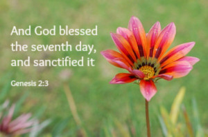 Sacred Sabbath: Mormons Keep Sunday a Special Day