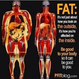 Fat: It's not just about how you look on the outside, it's how you ...