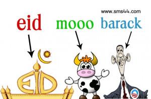 Funny Bakra EID Ul Adha Mubarak Wallpaper Images , SMS