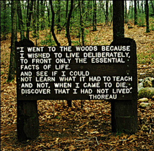 Remembering Henry David Thoreau, and Snippets of Walden