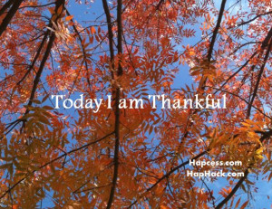 Today I am thankful.